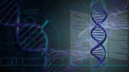 DNA Grid