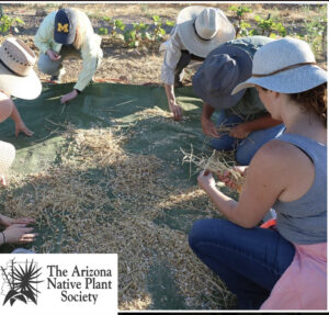 AZ Native Plant Society