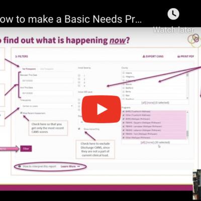 Making a Basic Needs Profile