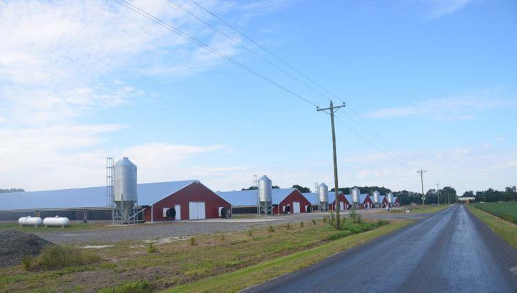 Chicken Litter Processing Plant Approved