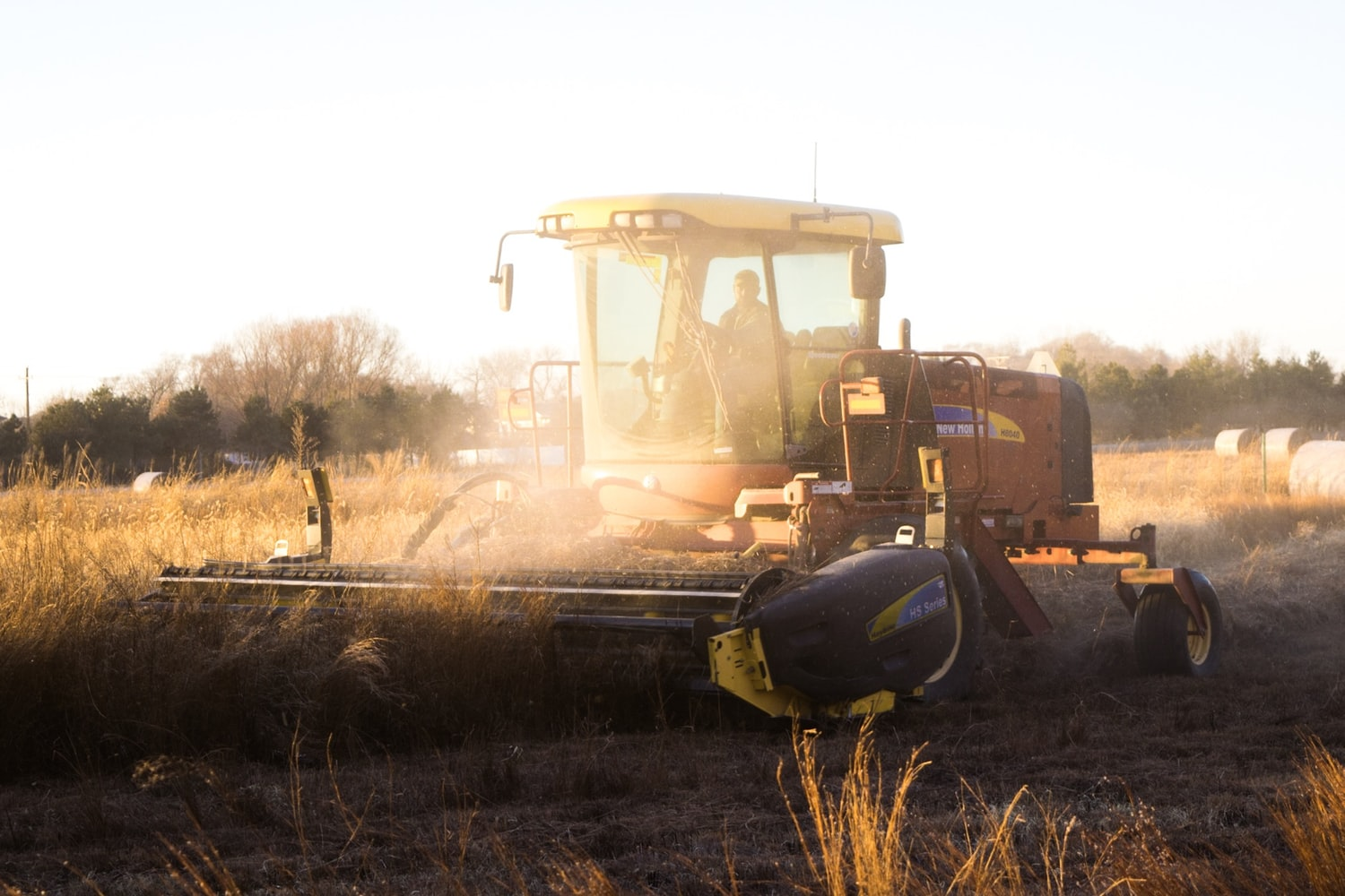 Large harvester tractor going through field of wheat at sunset.
