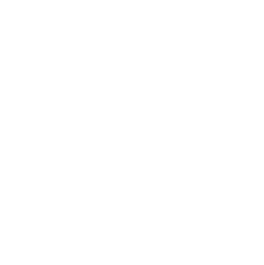 truck outline icon