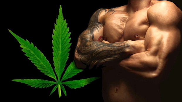Episode 56: Can Weed Boost Testosterone & Is Self-Esteem a Health Hoax?