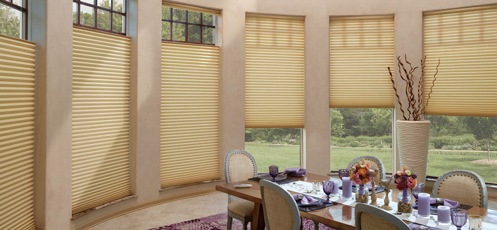 Hunter Douglas Cellular Eco Friendly Going Green beige dining room top down bottom up shade