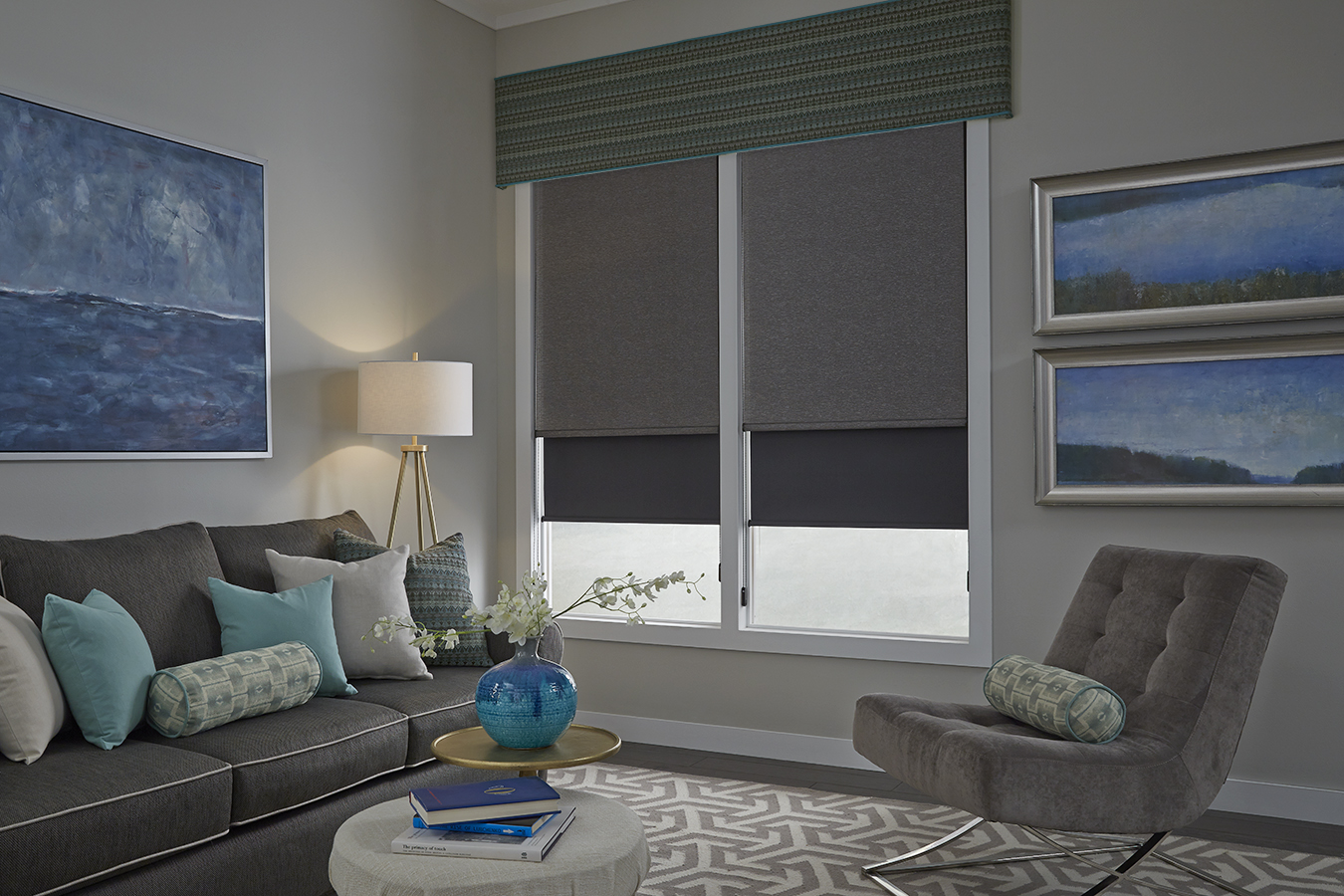living room dual shades