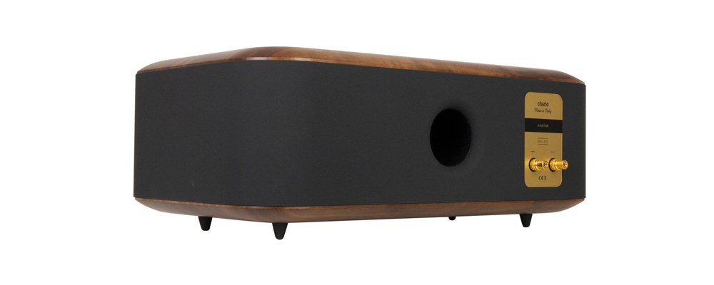 Chario Aviator Balbo Center Channel Speaker. Rear angle view. Speaker input output view.