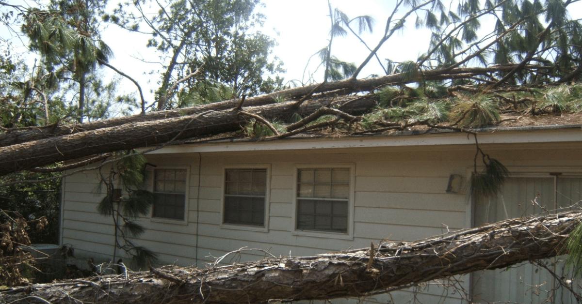 storm damage in Orlando