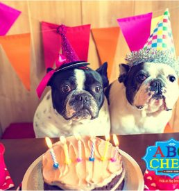ABC-Chefs-Gift-Cards-Happy-Birthday-05