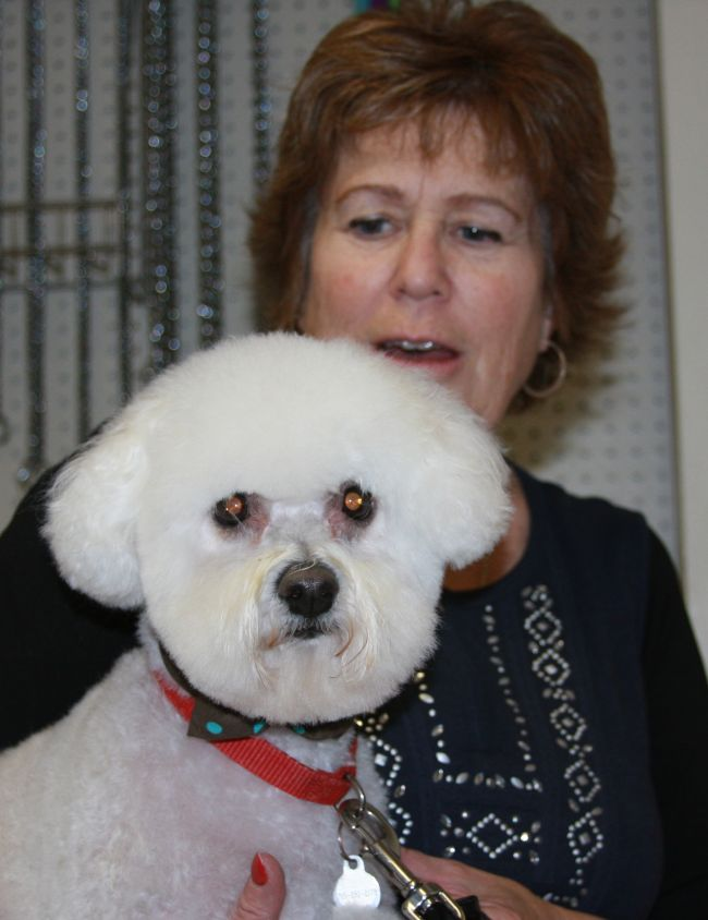 Happy dog with happy owner after stress free Grooming