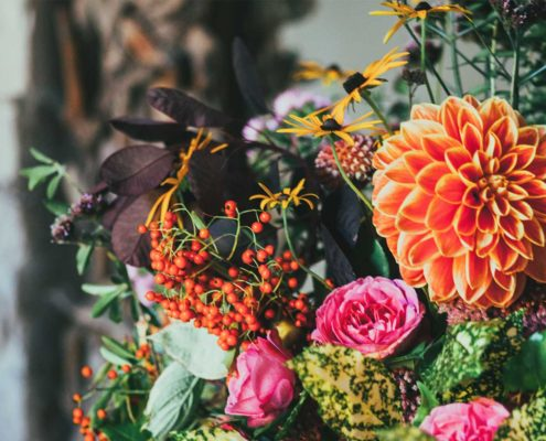 Free floral stock photo