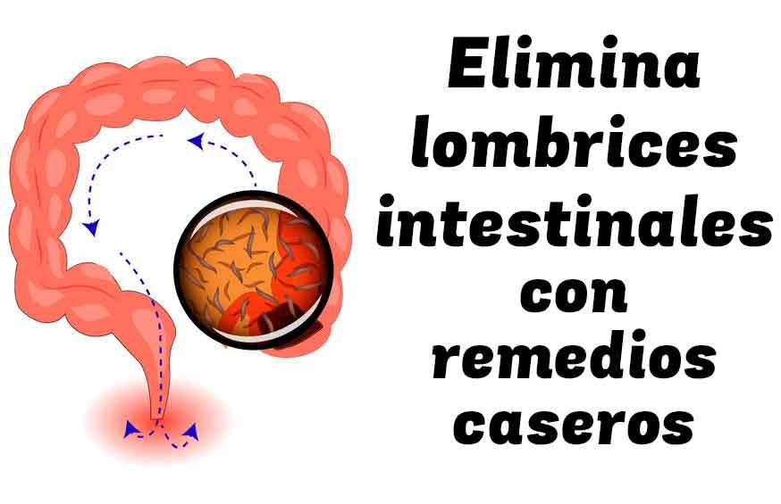 Elimina las lombrices intestinales con remedios naturales