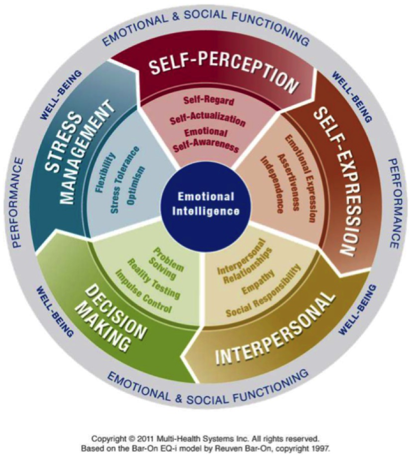 Emotional Intelligence – EQi® 2.0 and EQ360 Assessments