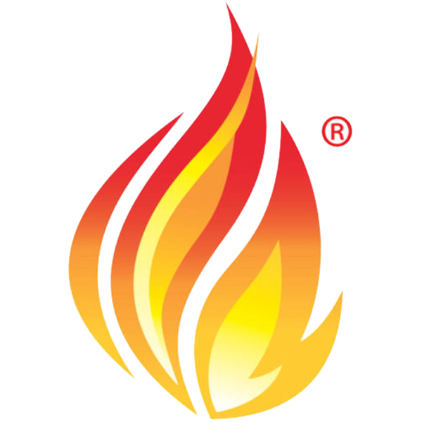Igniting FHIR for Healthcare