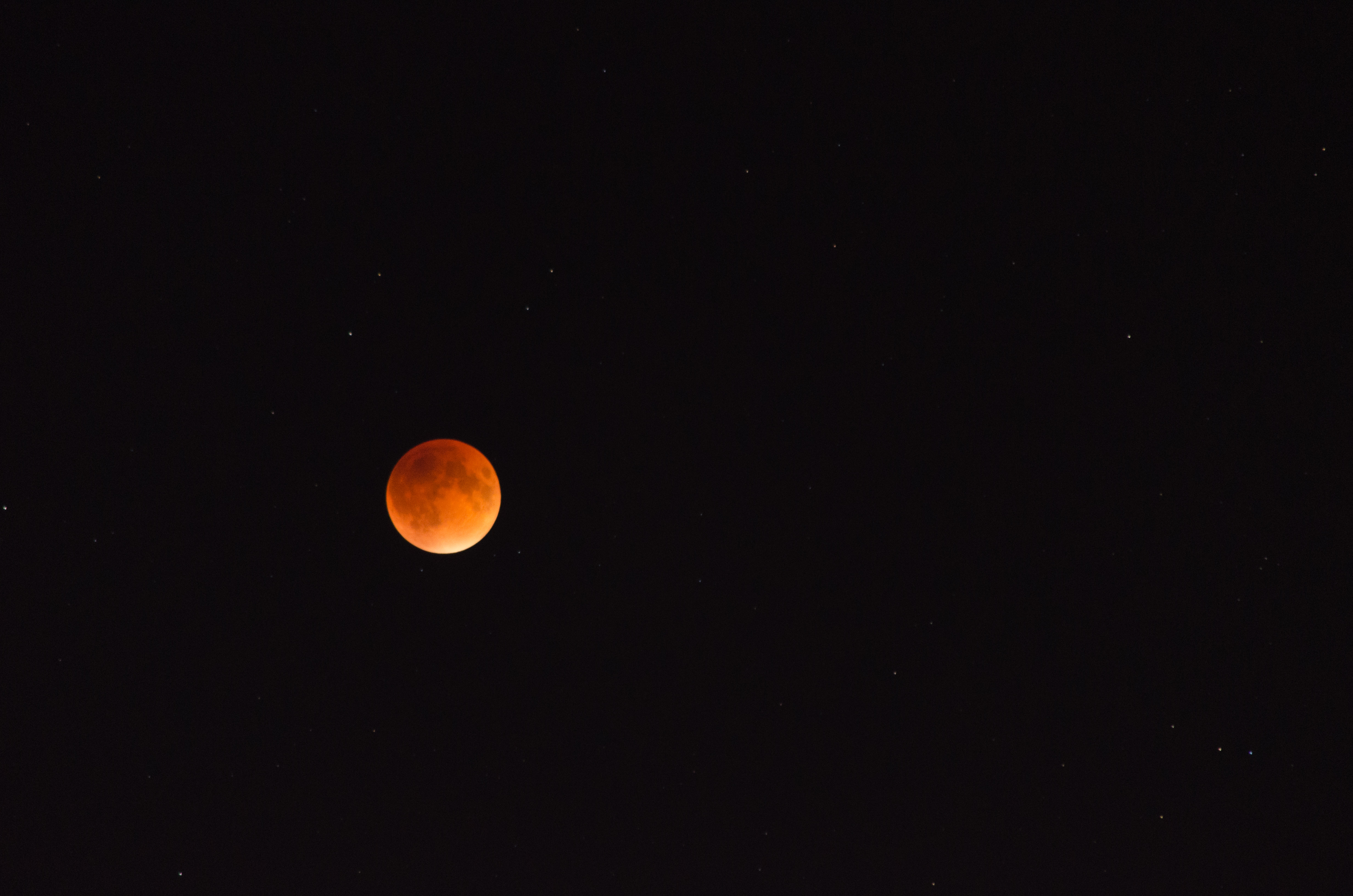Blood moon eclipse over Boston