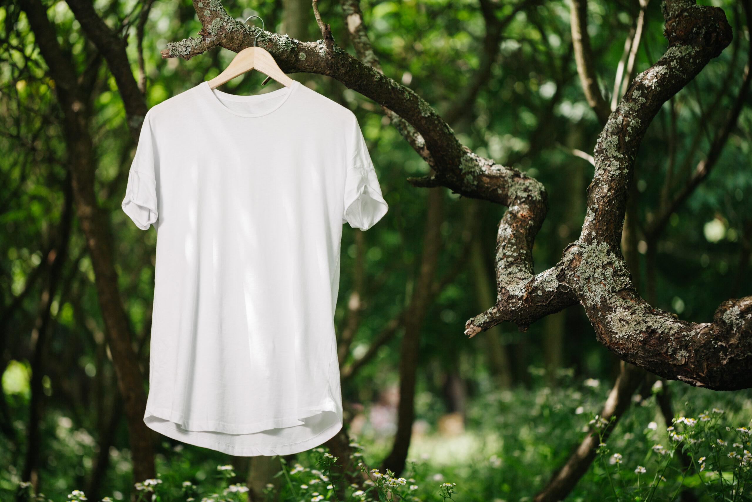 eco friendly t-shirt brands