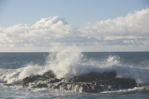How to Survive a Rip Current of the Mind When Practicing Mindfulness Meditation