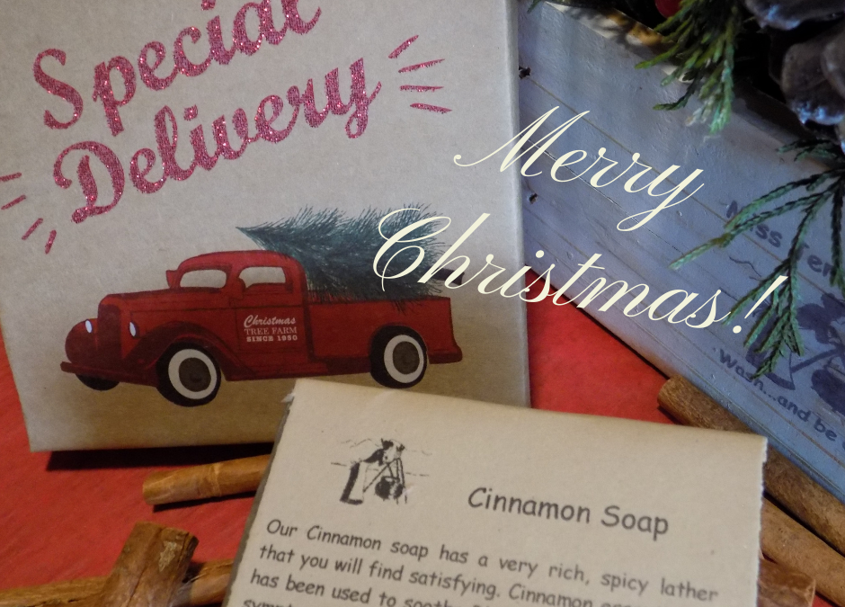 Cinnamon Soap is Back
