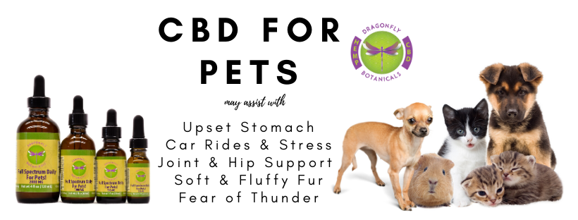 Hemp for Pets may assist with stomach upset, car rides and stress, joint and hip support, fear of thunder
