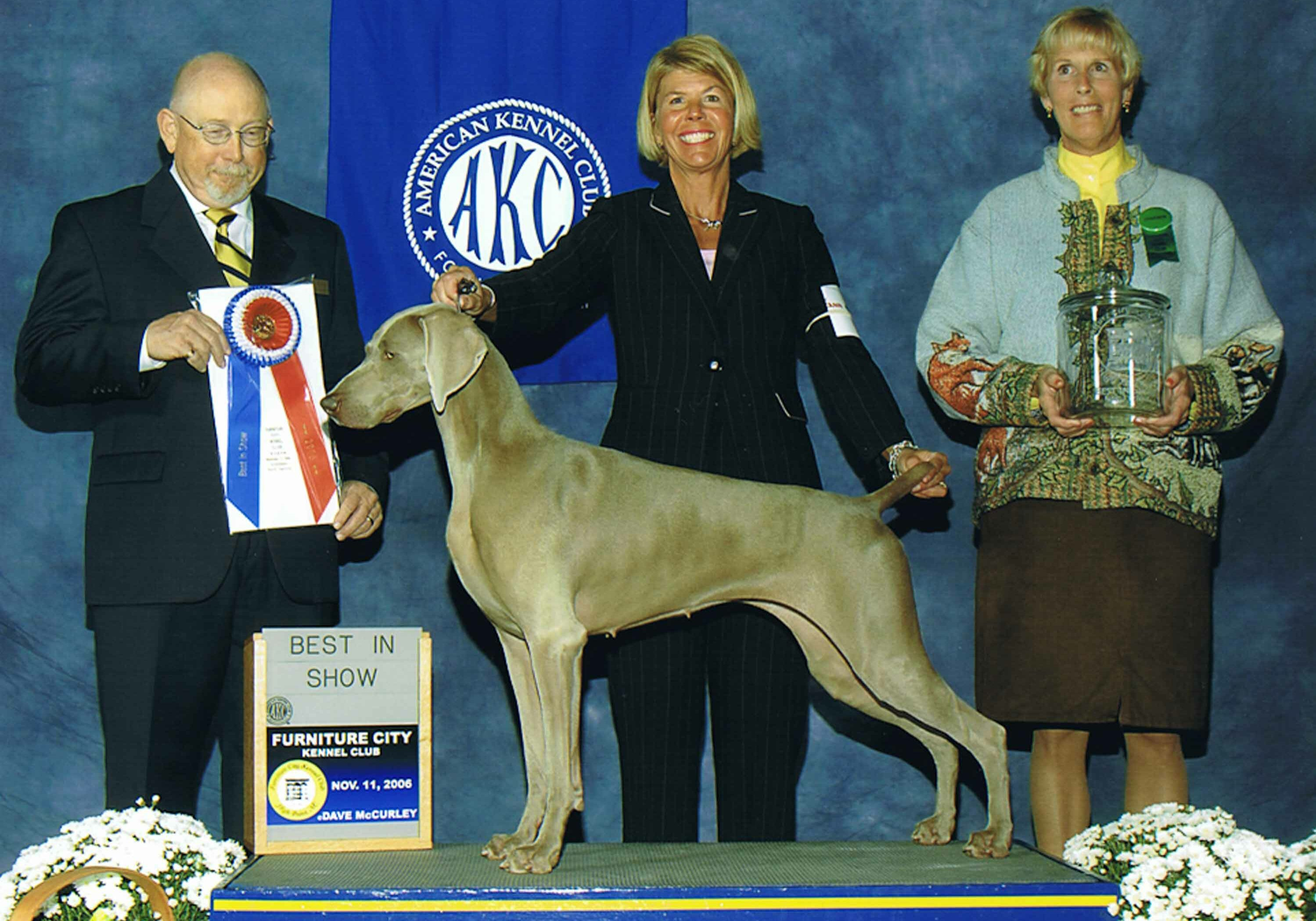 Dharma Best in Show 2007