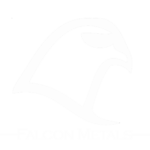 falcon-metal-logohollowwhite