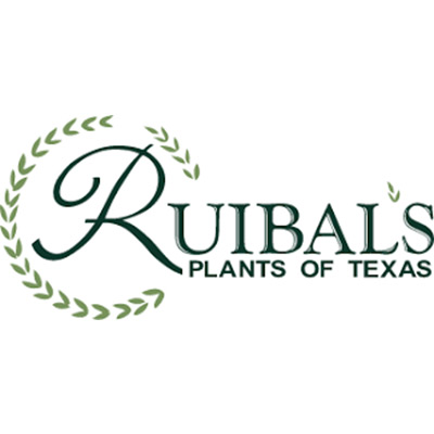 clients-ruibals