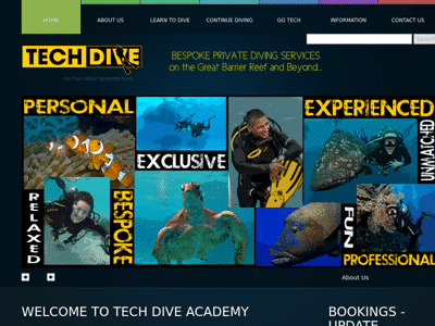 Tech Dive Website 2011
