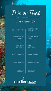 This or That Diver Edition