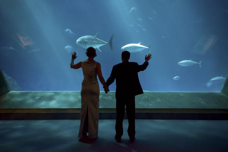 aquarium wedding venue Bay Area