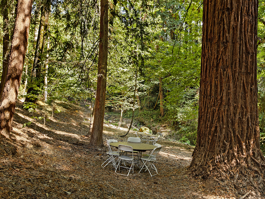 Taylor Made Retreat 12 step alcohol recovery outdoor quiet spaces