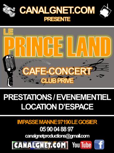 brochure-prince-land-1