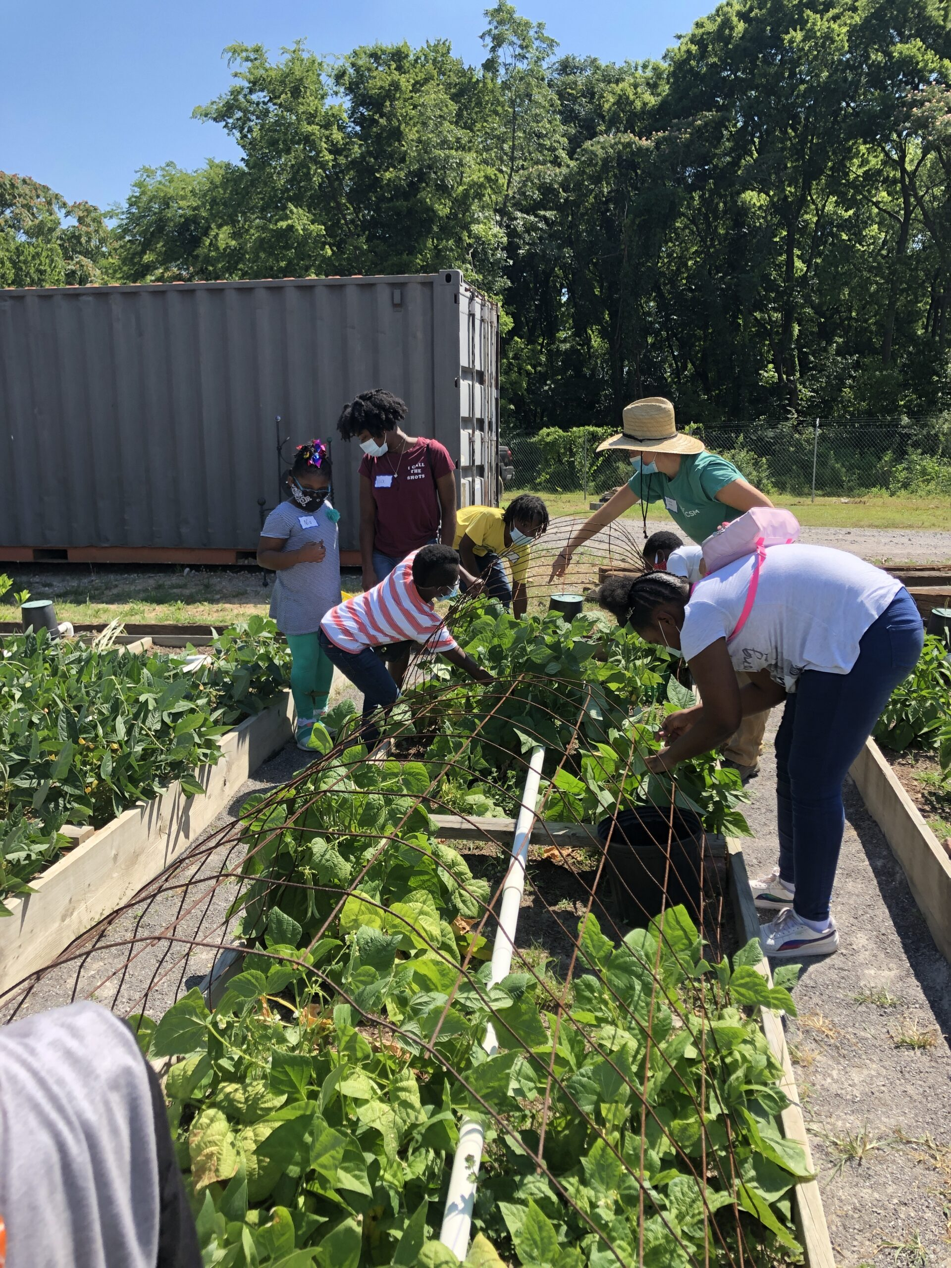 A Tactile Experience In A Virtual World: Summer Campers Get Hands-On In The Garden