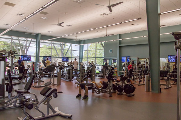 Business Automation Gym