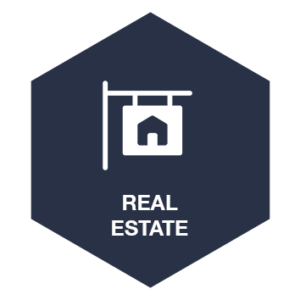 Real-Estate-icon