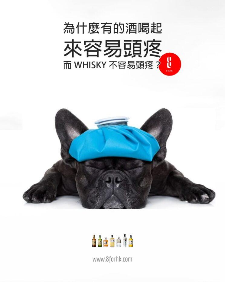 為什麼喝威士忌不那麼容易頭疼