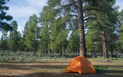 Sedona Free Dispersed Camping Spots