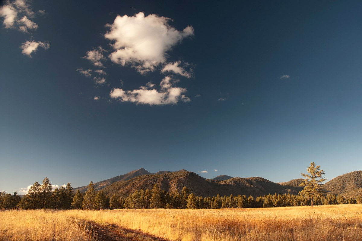 Flagstaff-San-Francisco-Peaks-Arizona-From-Buffalo-Park