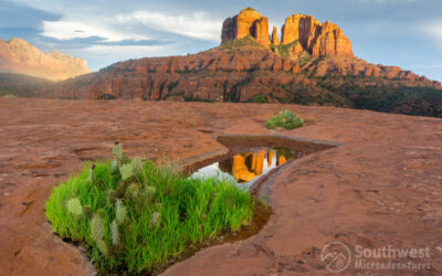7 Reasons To Visit Sedona, Arizona
