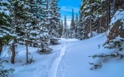 Snowshoeing Near Denver: Our 4 Favorite Trails