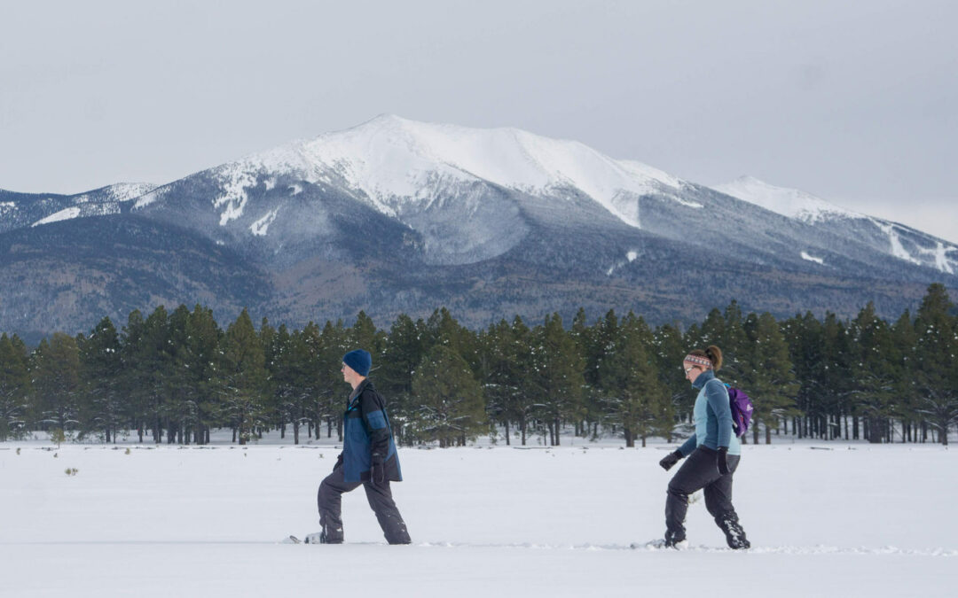 Snowshoeing In Flagstaff: Our 5 Favorite Trails