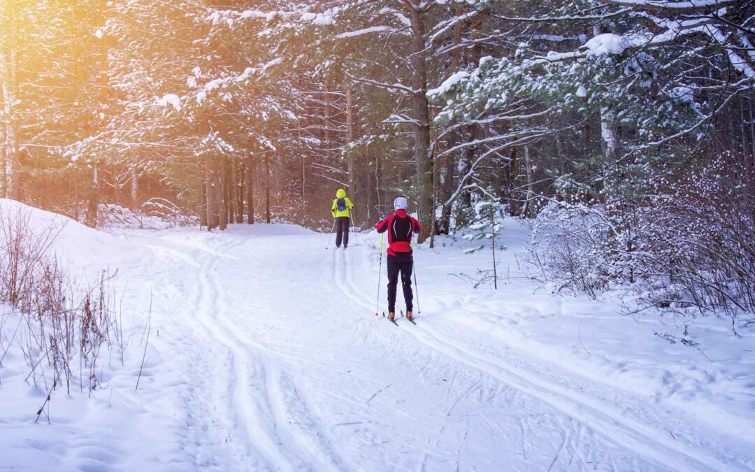 Cross Country Skiing In Boulder: Our 5 Favorite Trails