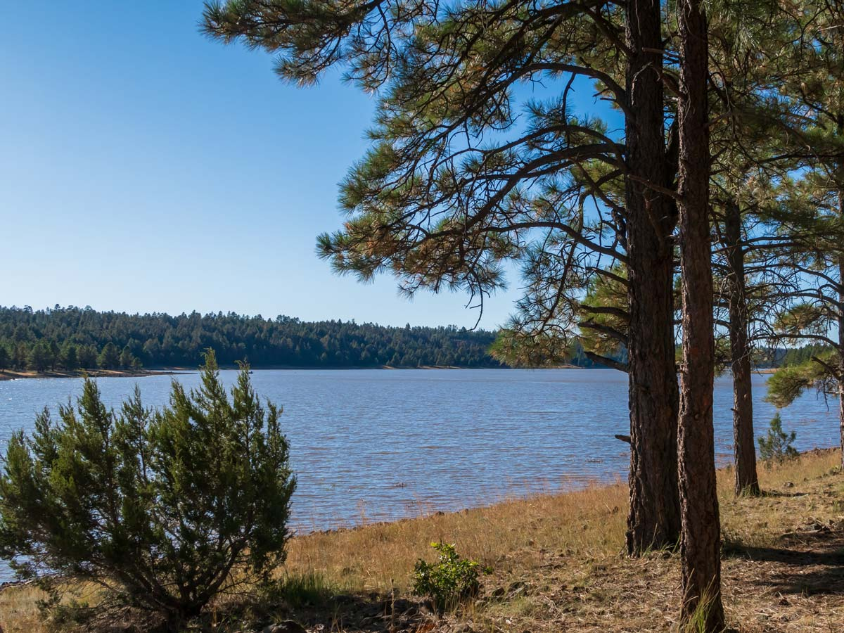 Lake-Mary-Flagstaff-Arizona-Swimming