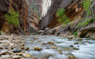 Do You Need A Permit To Hike the Narrows?