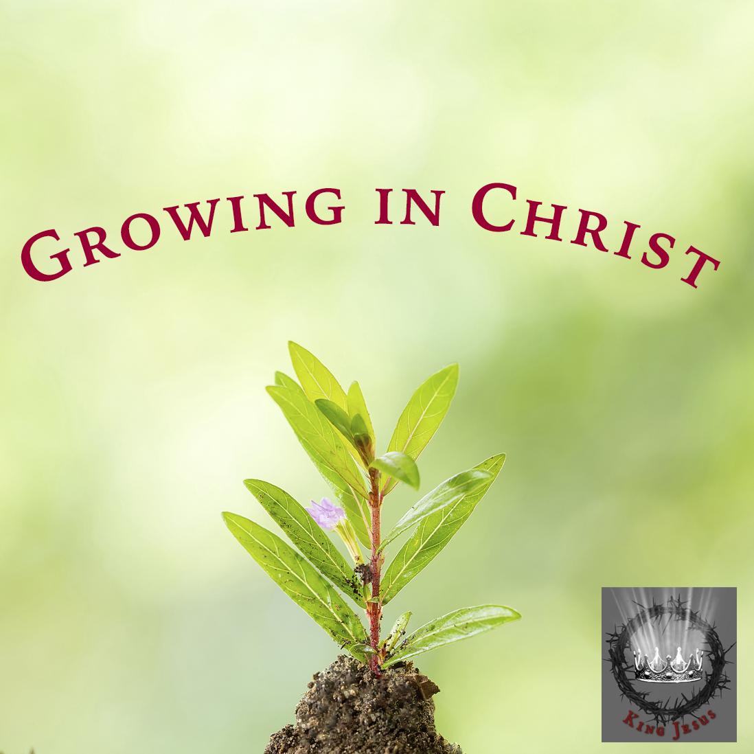 08.22.21 MAKING DISCIPLES OF JESUS  (King Jesus: The Gospel of Matthew- Part 75)