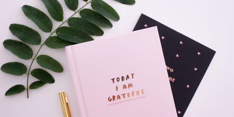 Ann Peck Today I am grateful journal