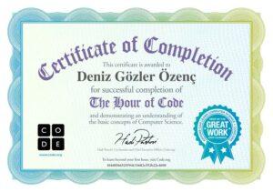 1 saatte kod yazmayı öğrenin: code.org