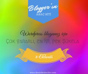 WP blogunuz için çok yararlı, en iyi, pek şükela 5 eklenti