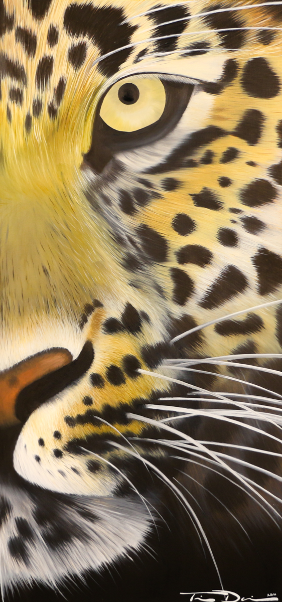 Half Leopard - Original oil painting by wildlife artist Timothy Davison of the Davison Art Company featuring a half of a leopard looking out at the viewer. The shape of the continent of Africa is hidden in the spots. © COPYRIGHT TIMOTHY DAVISON