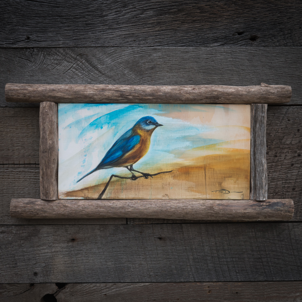 Texas Bluebird - Original oil painting by wildlife artist Timothy Davison of the Davison Art Company featuring an Eastern Bluebird, photographed at the Trinity River Audubon Center in Dallas Texas. This simple painting appears to come off the surface, revealing the wood grain beneath. Framed with a custom driftwood frame. © COPYRIGHT TIMOTHY DAVISON