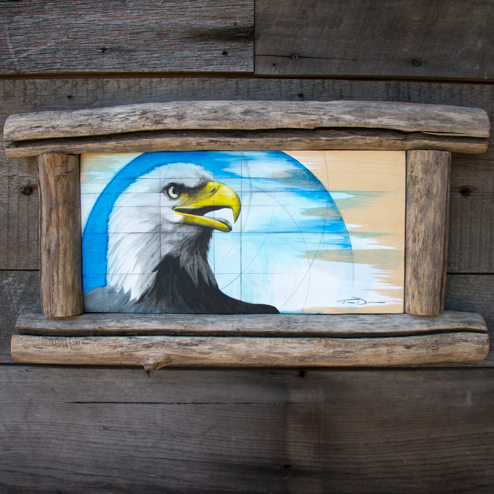 The American Eagle - Original oil painting by wildlife artist Timothy Davison of the Davison Art Company featuring a close up view of a bald eagle head with beak open, surrounded by blue circles. Reference photo taken in Occoquan, Virginia. This simple painting appears to come off the surface, revealing the wood grain beneath. Framed with a custom driftwood frame. © COPYRIGHT TIMOTHY DAVISON