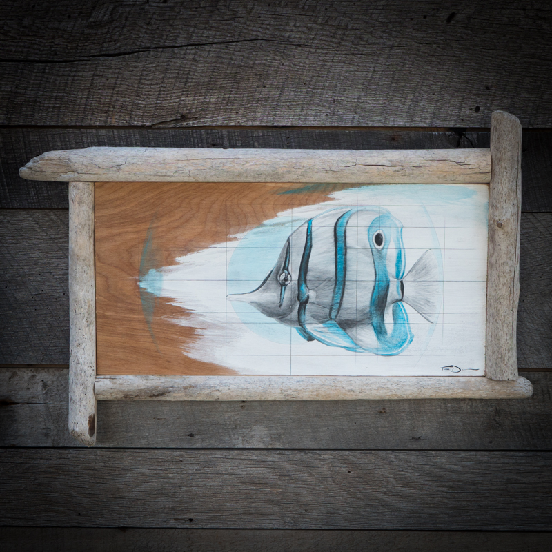 Blue Butterflyfish - Original oil painting by wildlife artist Timothy Davison of the Davison Art Company featuring butterfly fish, painted in blue. This painting appears to come off the surface, revealing the wood grain below. Framed with a custom driftwood frame. © COPYRIGHT TIMOTHY DAVISON